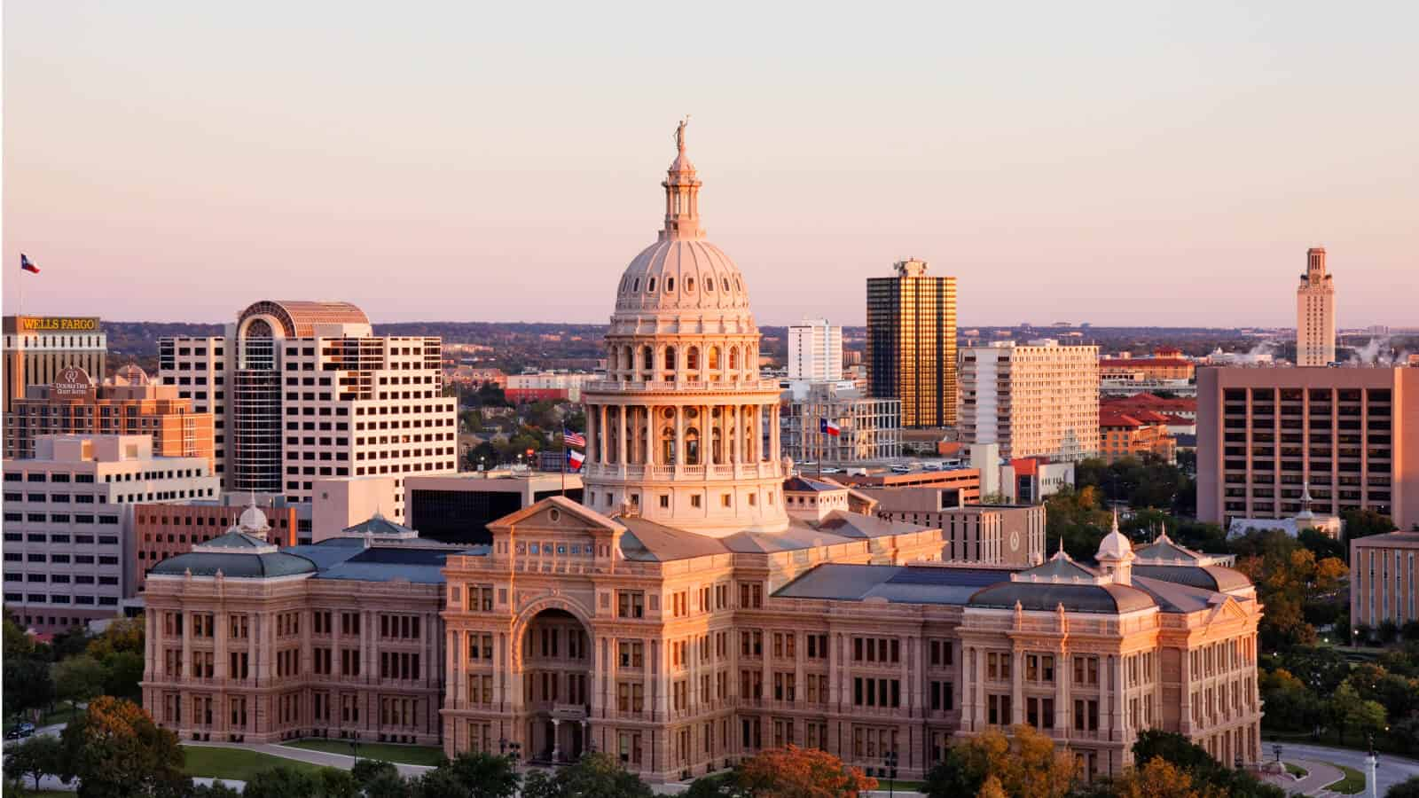 Pros and cons of forming an LLC in Texas.