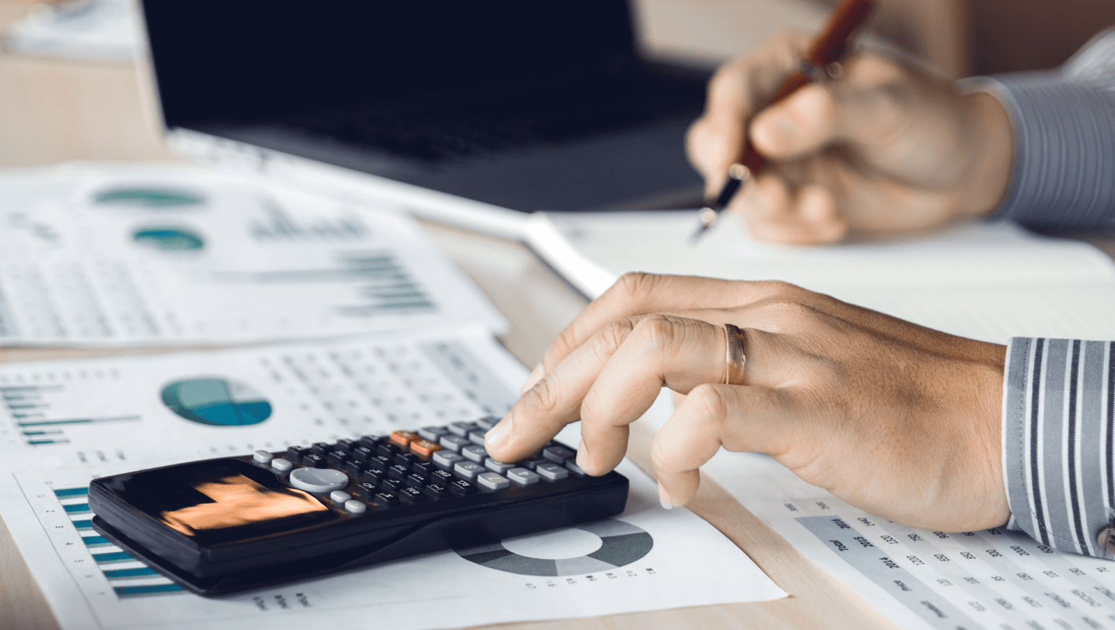 Accounting professionals can serve as LLC organizers